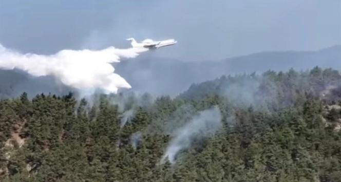 Sinop'taki orman yangınına havadan müdahale ediliyor