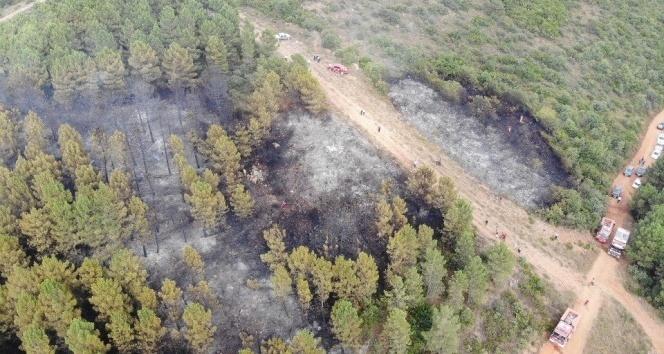 İstanbul'da Aydos Ormanı'nda çıkan yangın kontrol altına alındı