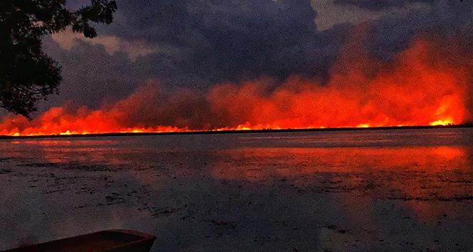 Samsun'daki sazlık yangını kontrol altına alındı