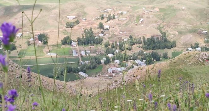 Yüksekova'da bir köy koronavirüs nedeniyle karantinaya alındı