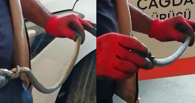 Otomobilin motoruna giren yılanı itfaiye çıkardı