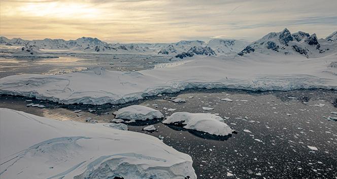 'Gezegenin Kara Kutusu: Antarktika' belgeselinin ilk gösterimi Külliye'de yapıldı