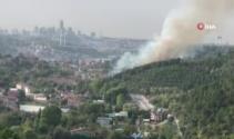 Anadolu Hisarı'nda korkutan orman yangını