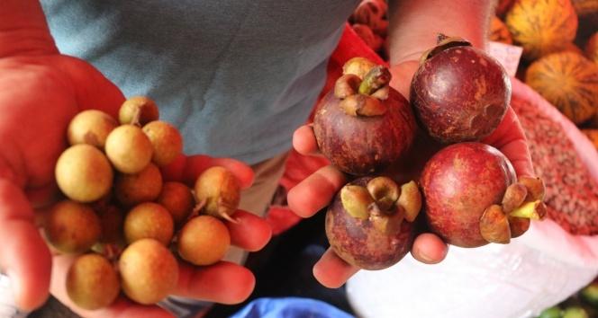 Alanya'da yetişen tropik meyveler fiyatlarıyla dudak uçuklatıyor