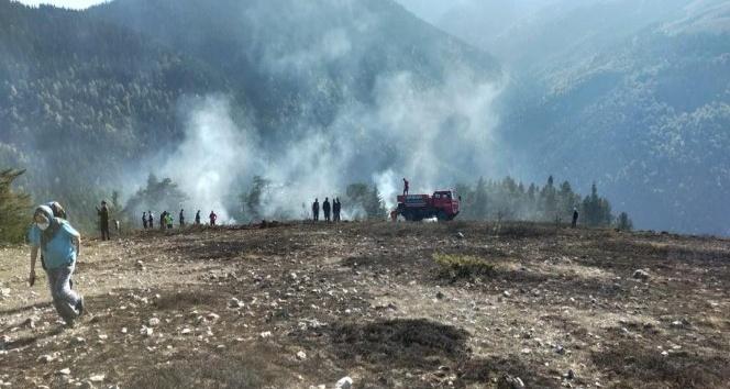 Bolu'da, orman yangını büyümeden söndürüldü