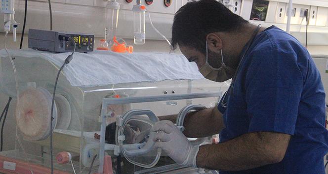 Terör örgütünün kalkan olarak kullanmak istediği hastanede 100 bin hastaya şifa