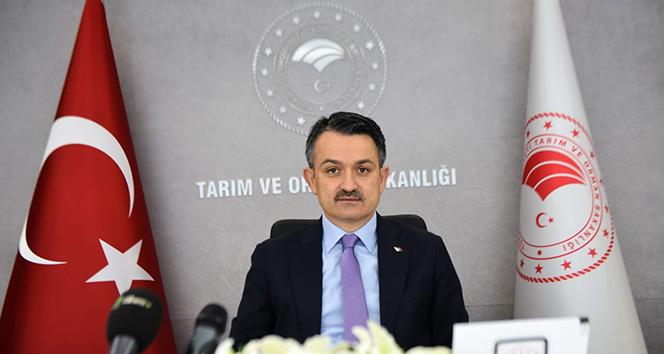 Bakan Pakdemirli: 'Türkiye'nin ilk elektrikli traktörü seri üretime hazır hale geldi'