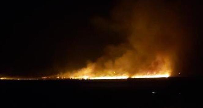 Yüksekova'da birçok kuş türünün yaşadığı Nehil Sazlığı alev alev yanıyor