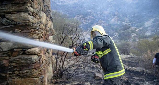 Suudi Arabistan'da orman yangını sürüyor