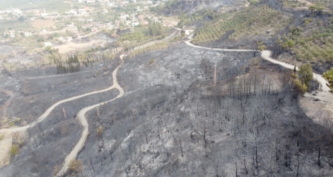 Hatay'da yanan alanlar havadan görüntülendi! Yürek yakan görüntü