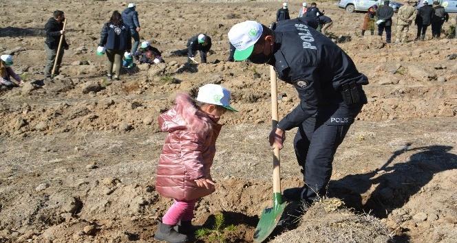 Şehitler Diyarı Sarıkamış'ta 'Geleceğe Nefes' Için 11 Bin Fidan Toprakla  Buluştu - Kars