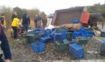 Zeytin işçilerini taşıyan traktör devrildi: 5 yaralı