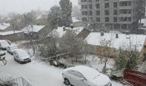 Bitlis'e mevsimin ilk karı yağdı