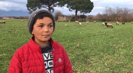 Küçük çoban videolarındaki diyalogları ile sosyal medyanın yeni fenomeni oldu
