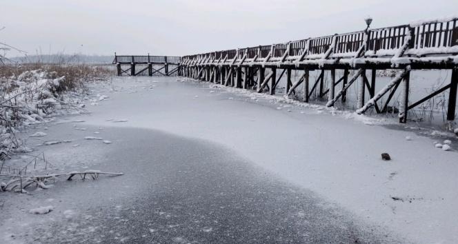Sıcaklığın eksi 16'ya düştüğü Düzce'de Efteni Gölü buz tuttu