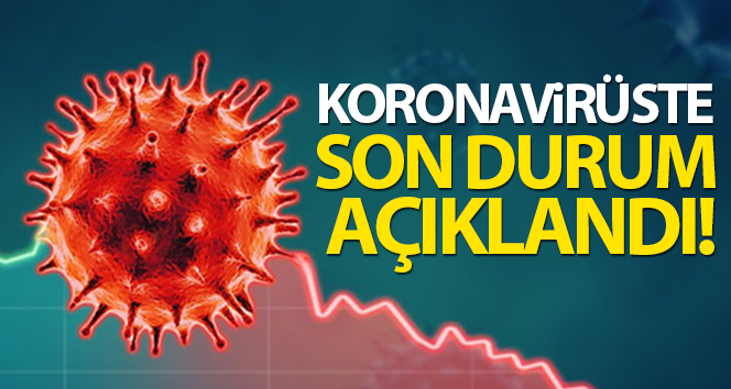 Türkiye'de son 24 saatte 7.489 koronavirüs vakası tespit edildi