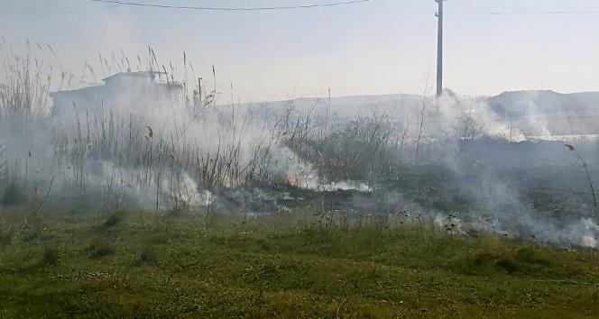 Yangın Gömeç sahilini duman altında bıraktı