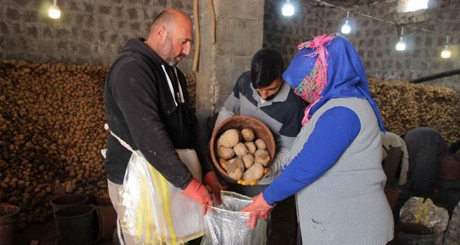 Bağcılar Belediyesi, Nevşehir'den 200 ton patates aldı