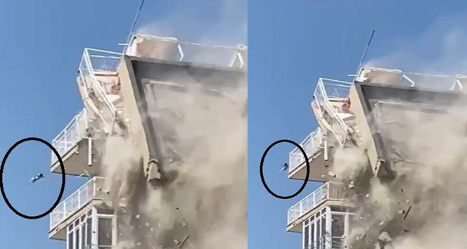 Bina yıkılırken düşen kedi ağır yaralandı: O anlar kamerada