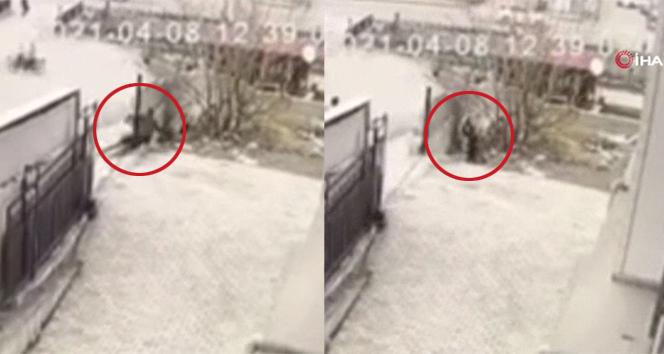 Polisten kaçan yankesici tepetaklak düşünce yakalandı