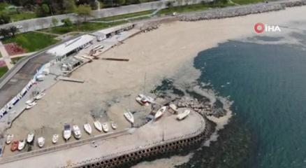 Caddebostan Sahilinde deniz salyası tedirginliği artarak devam ediyor