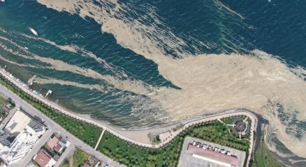 İzmit Körfezinde deniz salyası istilası artarak devam ediyor