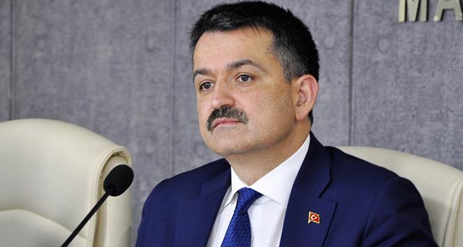 Tarım ve Orman Bakanı Pakdemirli: 'Son 19 yılda, 5,3 milyar fidanı toprakla buluşturduk'