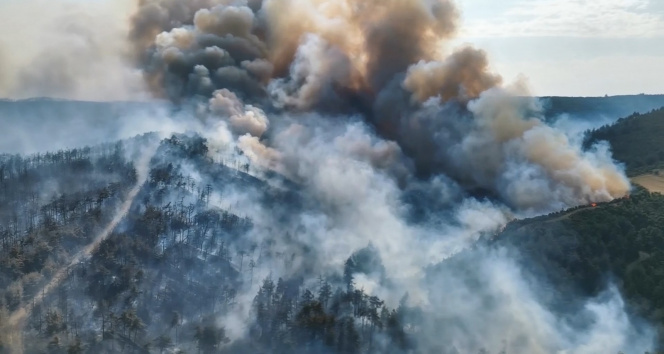 Çanakkale'de geçtiğimiz yıl 123 yangın çıktı, bin hektar alan yandı