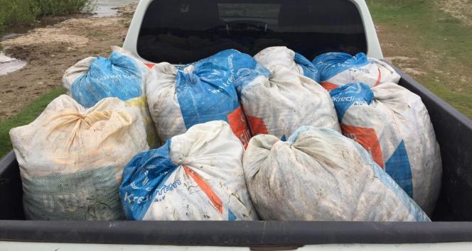 Kaçak avlanmış 1,5 ton inci kefali ele geçirildi