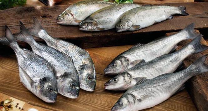Pandemi döneminde Muğla'dan 410 milyon dolarlık balık ihracatı