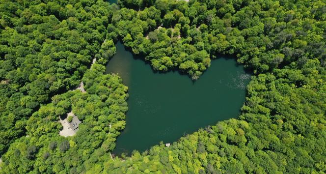 Yeşilin tüm tonlarını barındıran Yedigöller'de görsel şölen havadan görüntülendi