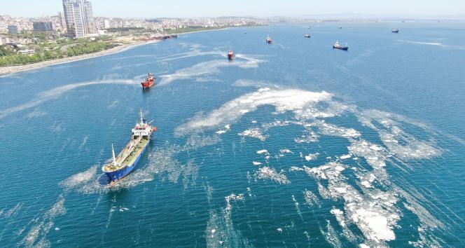 İstanbul sahillerini istila eden deniz salyalarında yoğunluk arttı