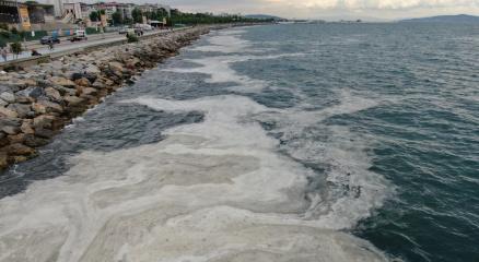 Bostancı Sahilinde deniz salyası yoğunluğu su altı kamerasıyla görüntülendi