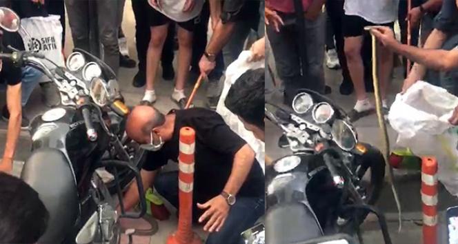 Yılan motosikletle şehre geldi