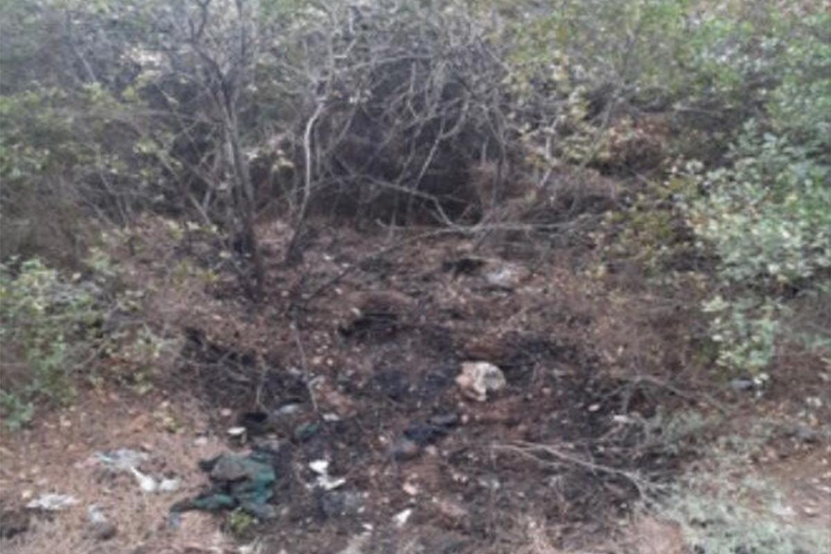 İzmir'de orman yangını çıkarmak isteyen şüpheli, PKK/KCK üyesi çıktı