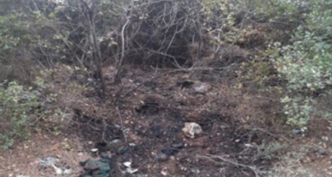 İzmirde orman yangını çıkarmak isteyen şüpheli, PKK/KCK üyesi çıktı