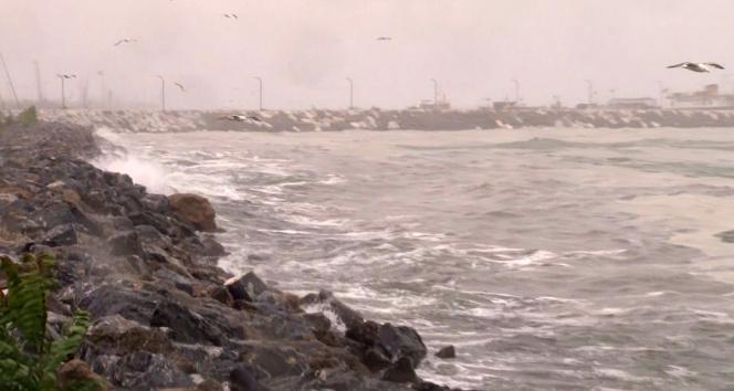 Marmarada lodos, müsilajı kıyıya itti
