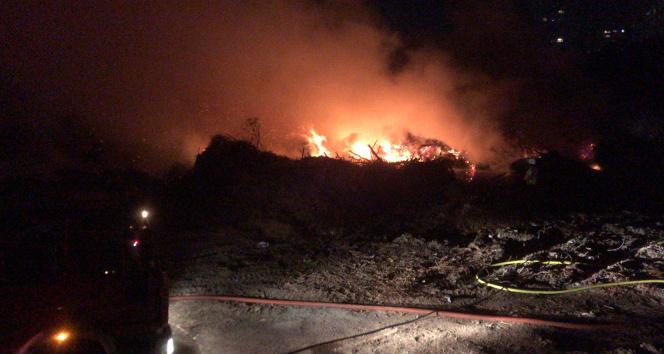 Bakırköyde ağaçlık alanda korkutan yangın