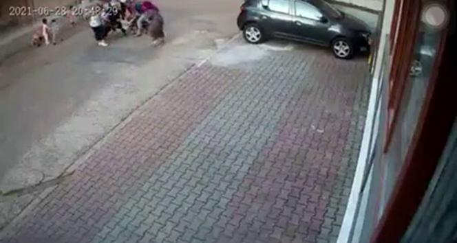 Kartalda pitbull dehşeti: 9 yaşındaki çocuğa 30 dikiş atıldı
