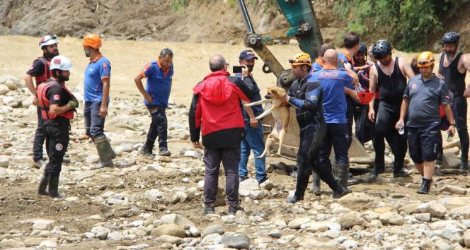 Mahsur kalan köpek kepçeyle kurtarıldı