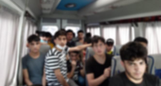 8 farklı operasyonda 17 kaçak göçmen yakalandı