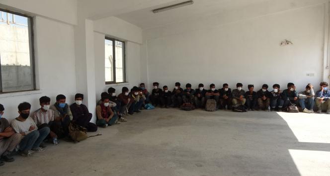 Ercişte 73 düzensiz göçmen yakalandı
