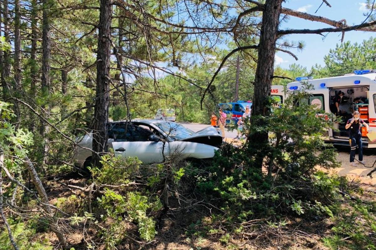 Yoldan çıkan otomobil ağaca çarptı, araçtaki çift yaralandı