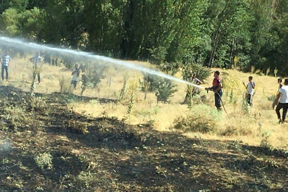 Bingöl'de korkutan yangın: Alevler tarlalara ulaşmadan söndürüldü