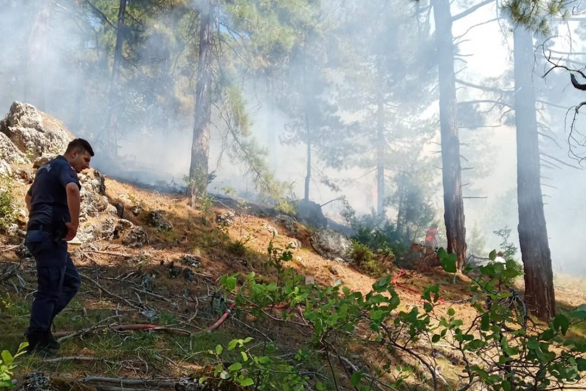 Adanada ikinci orman yangını