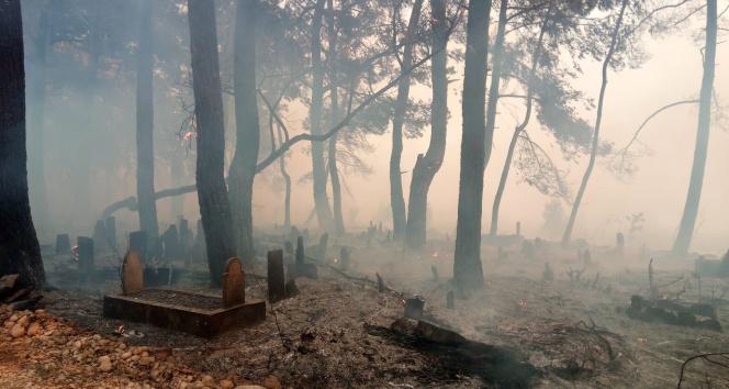 Manavgattaki yangın mezarlıkları bile küle çevirdi