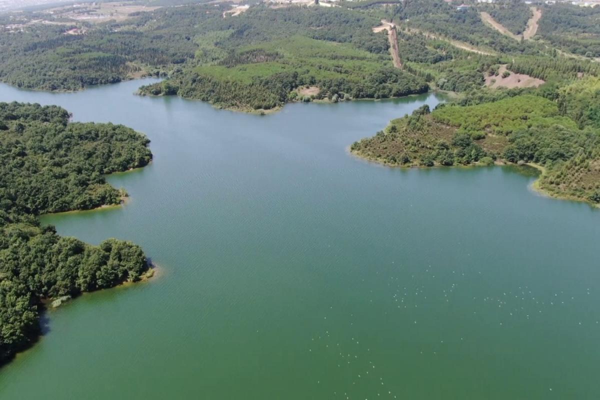 Son 10 yılın en yüksek seviyesinde olan Ömerli Barajı havadan görüntülendi
