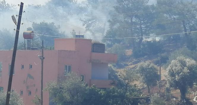 Mersindeki orman yangını yerleşim yerlerini tehdit etmeye başladı