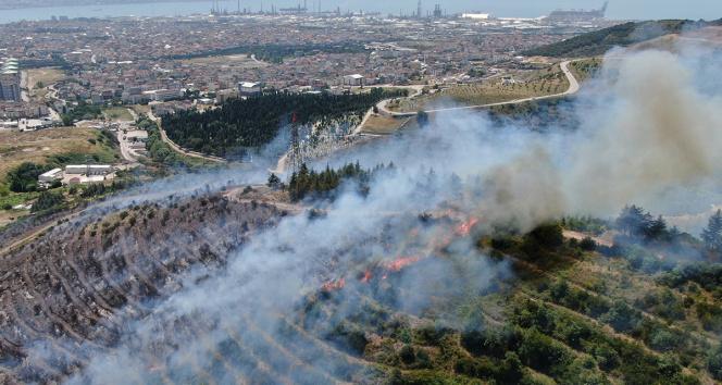 Kocaelideki orman yangını 1 buçuk saatte kontrol altına alındı