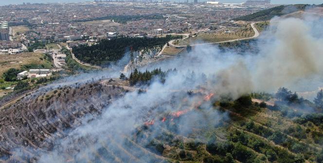 Milas'ta orman yangını...Oteldeki vatandaşlar teknelerle tahliye ediliyor -  İhlas Haber Ajansı